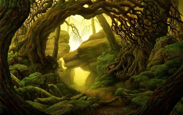 Forest-Marco Ferrara