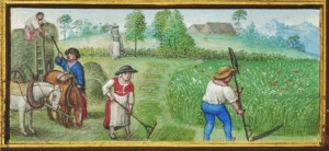 Book of Hours Harvest2