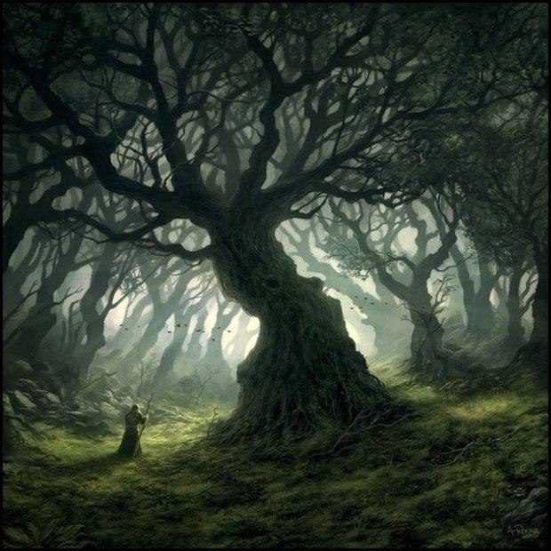 """Warm Mist"" by Andreas Rocha"