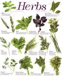 herbs-chart