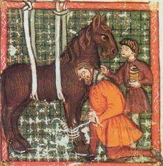 horse-healed