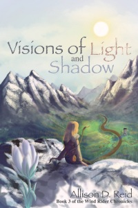 Image result for images of visions of light and shadow by allison reid