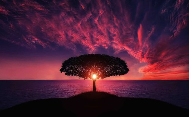 dawn-desktop-background-dusk-36717